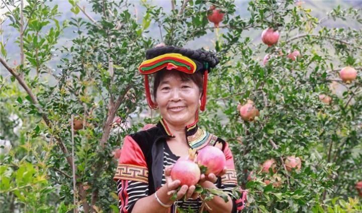 宁夏优质的黑龙江绿色食品招商加盟